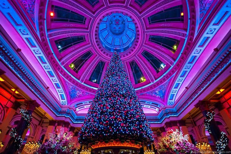 Where students can Go for celebration Christmas
